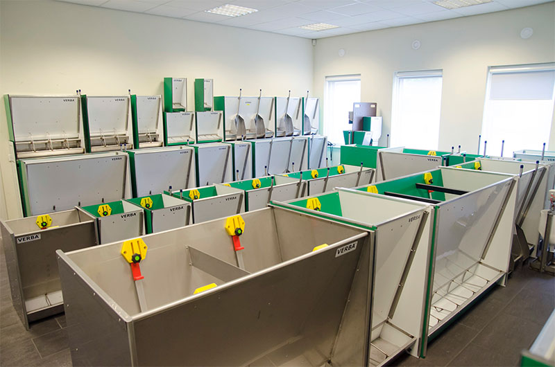 Pigsty / Piggery equipment: troughs / feeders for piglets